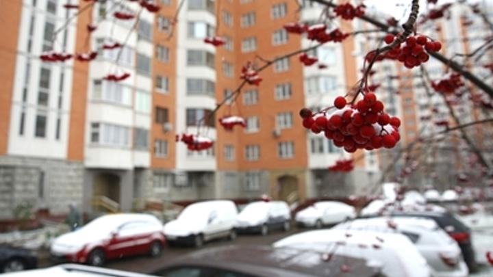 Погодное иго: Россия замерзает из-за монгольского антициклона