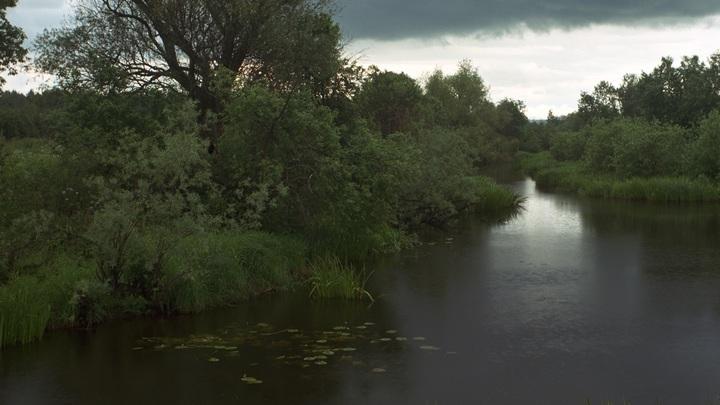Пятно топлива на водохранилище в Химках расползается: На объект Спецстроя пришли с проверкой