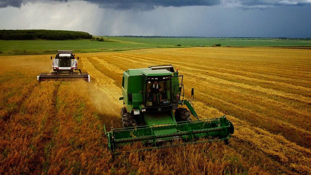 Продовольственная безопасность стоит на импортном фундаменте